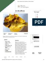 Orata Con Patate Pomodori Allo Zafferano _ Ricette Di Sardegna