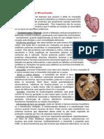 Cardiomiopatia portifólio
