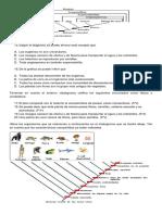 TALLER CIENCIAS NATURALES GRADO 9
