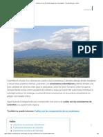 Cuáles Son Los ECOSISTEMAS de COLOMBIA - Características y Vídeo