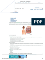 La Piel y Sus Partes - Monografias.com