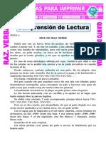 Comprensión de Lecturas Para Quinto de Primaria (1)