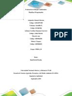 Paso 2 - Planificar Programador Grupo Col-2 A