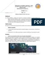 Cruz_Rubrica_3_Presentacion_Cruzada.docx
