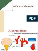 Hipertension Arterial Escencial
