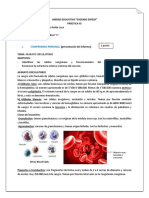 práctica-de-estructura-del-cuerpo-humano-de-BGU.docx