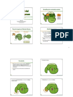 23 - Motilidad-Ecosistema-Ret-Ruminal-2010.pdf
