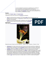 Floral parts01.docx