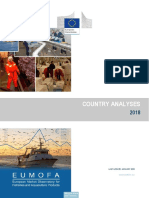 Country analyses.pdf