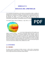 Neurofisiologia del Aprendizaje
