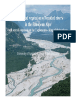Ecology and Vegetation of Braided Rivers