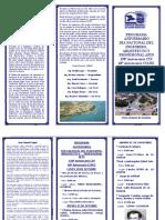 Triptico Dia Ingeniero 2019 PDF Corregido