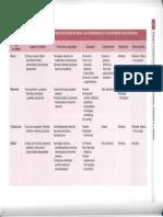 6 10 Resumen características clínicas afasias_Parte1