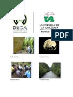 BROCHURE-DECA-Información.pdf