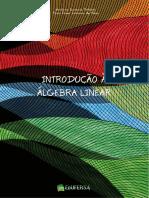 INTRODUÇÃO A ALGEBRA LINEAR.pdf