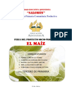 informe maiz