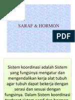SARAF_and_HORMON.pptx