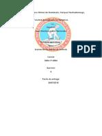 Manual de Usuario Dev Debian Touch