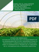 FEP 2018 HORTALIZAS G12 ETAPA MERCADO.pdf