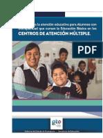 Manual  CAM  Guanajuato.pdf