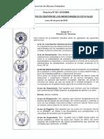 DIRECTIVA 001-2015 SBN
