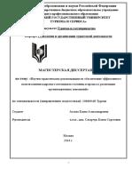 magisterskaya_dissertaciya_ageevoy_e.a._iyun_2014 (1).docx