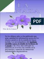 LA_LINAZA