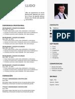 83 Curriculum Vitae Laboral