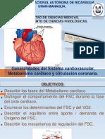 Generalidades Del Sistema Cardiovascular, Metabolismo Cardíaco y Circulación Coronaria.