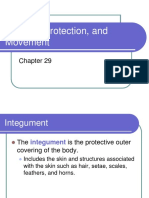 Form 4 17 Support Movement and Protection