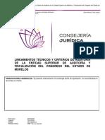 ineamientos Técnicos y Criterios de Auditoría