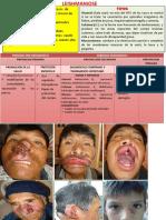 8 Leishmaniosis(Slide)