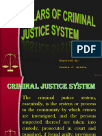 Report 5 Pillars of Criminal Justice System