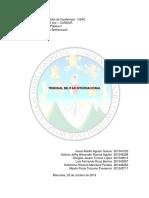 TRIBUNAL MILITAR INTERNACIONAL DE NUREMBERG.docx