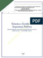 1. Sistemas e Gestão Em Segurança Pública - Apostila (ATUAL)