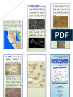 Trip- Las Lineas de Nazca