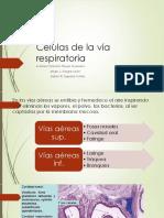 2. Células de la vía respiratoria.pptx