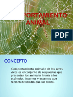 Diapositivas Comportamiento Animal