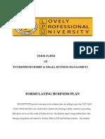 Term Paper of Entrepreneurship
