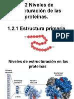 1.2 Niveles de estructuración de proteínas