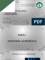 Anatomía quirúrgica del apendice y Apendictis aguda