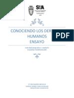 Principios Rectores de Los Derechos Humanos