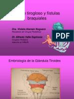 Quiste Tirogloso y Fístulas Branquiales