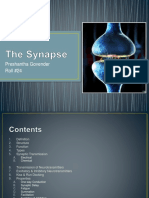 thesynapse-140607104258-phpapp01