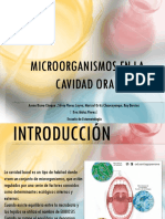 Microorganismos en La Cavidad Oral