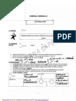 carbonil.pdf