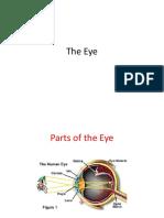 22.  The Eye