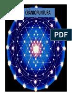 Apostila - craniopuntura.pdf