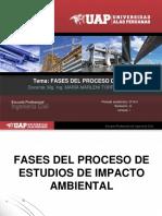Fases Del Proceso de EIA