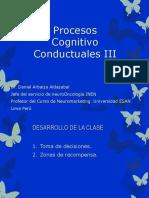 Los Procesos Cognitivo-conductuales III.pdf Gianca